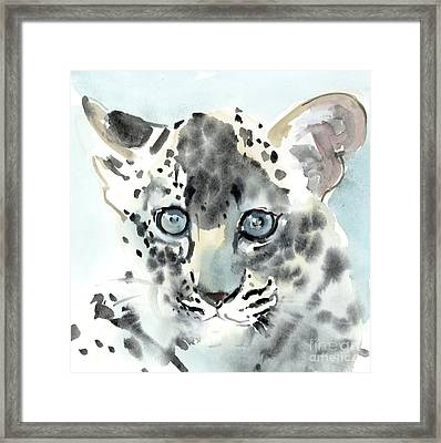 Shy Framed Print by Mark Adlington