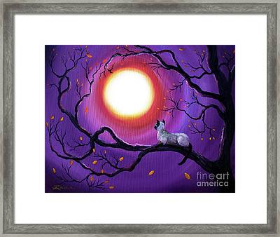 Siamese Cat In Purple Moonlight Framed Print by Laura Iverson