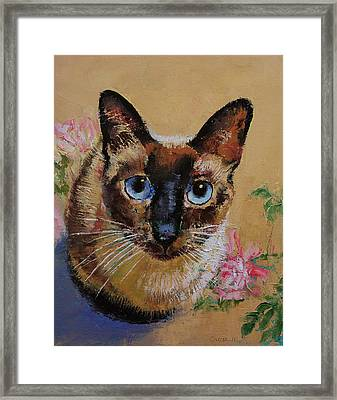 Siamese Cat Framed Print by Michael Creese