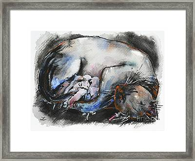 Framed Print featuring the painting Siamese Cat With Kittens by Zaira Dzhaubaeva
