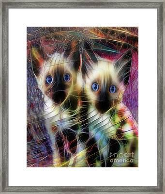 Siamese Cuties Framed Print