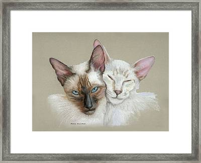 Siamese If You Please Framed Print