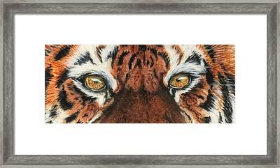 Sib Tig Eye Framed Print by Laurie Bath