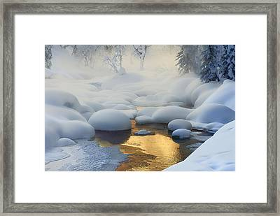 Siberia. -37?c (-35?f) Framed Print by Dmitry Dubikovskiy