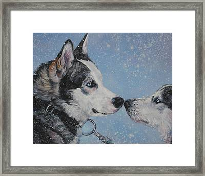 Siberian Huskies In Snow Framed Print by Lee Ann Shepard