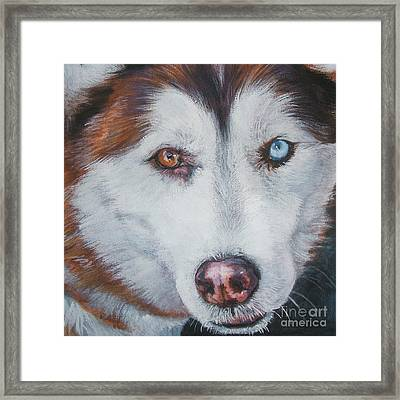 Siberian Husky Red Framed Print by Lee Ann Shepard