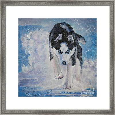 Siberian Husky Run Framed Print by Lee Ann Shepard