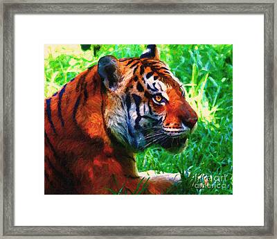 Siberian Tiger . Photoart Framed Print by Wingsdomain Art and Photography