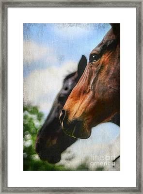 Side By Side Framed Print by Darren Fisher