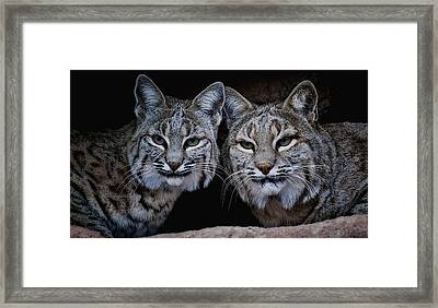 Framed Print featuring the photograph Side By Side by Elaine Malott