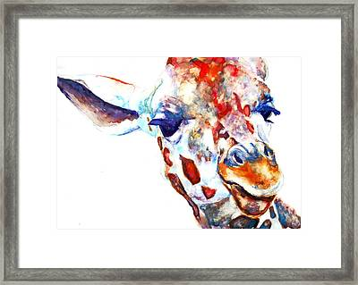 Side Eye Framed Print