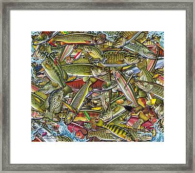 Side Fish Collage Framed Print by Jon Q Wright JQ Licensing