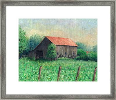 Side Of The Road Framed Print