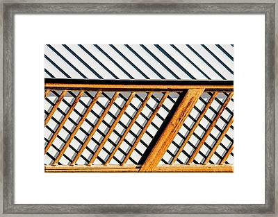 Side Step Framed Print by Paul Wear