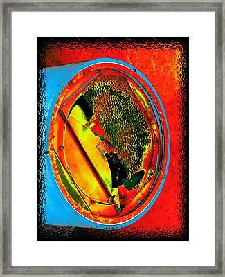 Sidelight Framed Print by Wendy J St Christopher