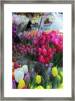 Framed Print featuring the photograph Sidewalk Flowers by Lora Lee Chapman