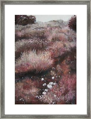 Sienna's Path Framed Print by Anita Stoll