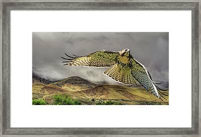 Sierra Mist Framed Print
