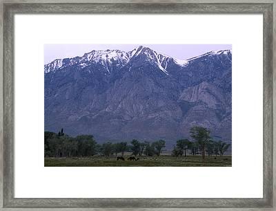 Sierra Nevada Eastside Framed Print