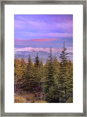 Sierra Nevada National Park At Sunset Framed Print by Guido Montanes Castillo