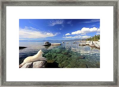 Sierra Sphinx Framed Print