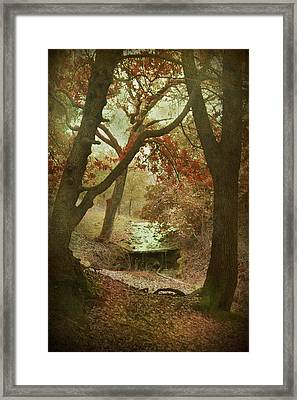 Sighs Of Love Framed Print by Laurie Search