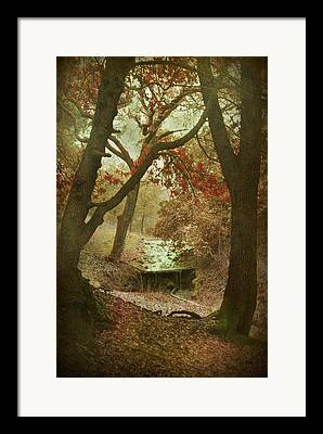 Framing Digital Art Framed Prints