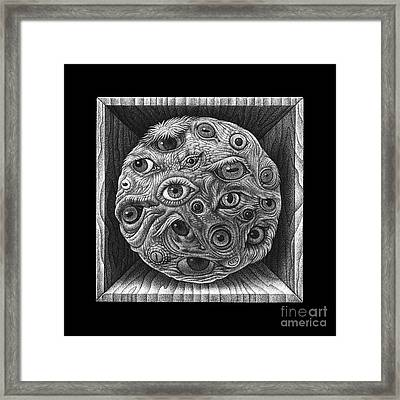 Sight Framed Print by David Fedan