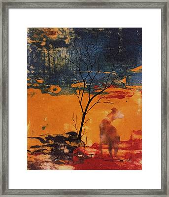 Sight Hound Framed Print