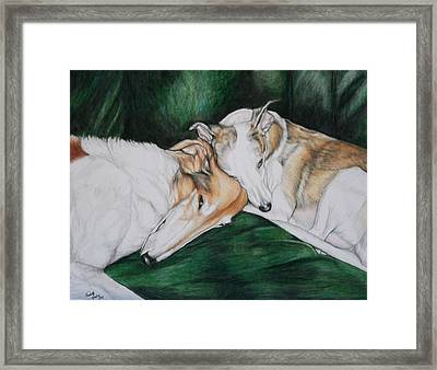 Sighthound Comfort Framed Print