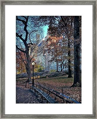 Framed Print featuring the photograph Sights In New York City - Central Park by Walt Foegelle