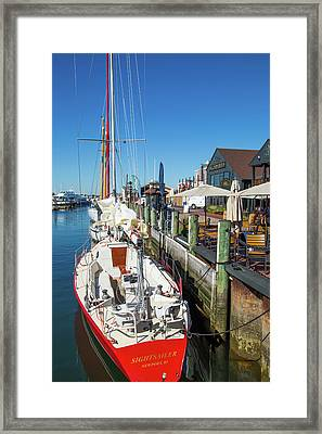 Sightsailer Framed Print by Karol Livote