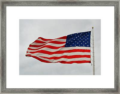 Sign Of Freedom Framed Print