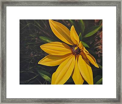 Sign Of Summer Framed Print
