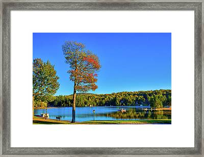 Signs Of Autumn On Old Forge Pond Framed Print by David Patterson