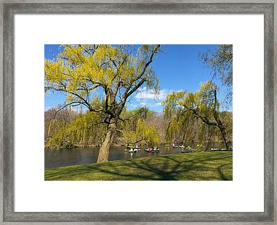 Signs Of Spring In Central Park 1 Framed Print by Muriel Levison Goodwin