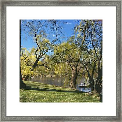 Signs Of Spring In Central Park 3 Framed Print by Muriel Levison Goodwin