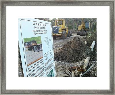 Sign...what Sign Framed Print by Lynda Dawson-Youngclaus