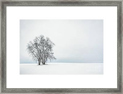 Silence Arise Framed Print