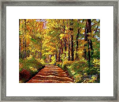 Silence Is Golden Framed Print by David Lloyd Glover