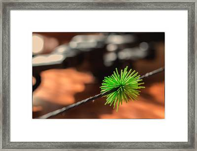 Framed Print featuring the photograph Silence Me by Tim Nichols