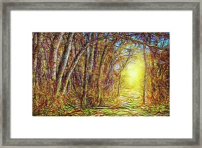 Silence Of A Forest Path Framed Print by Joel Bruce Wallach