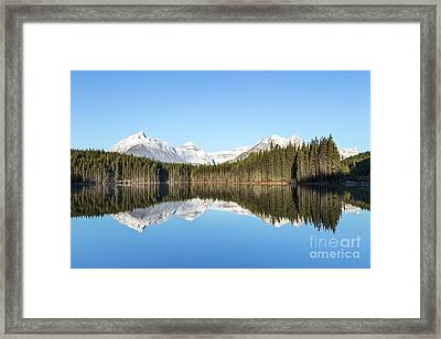 Silence Of North Framed Print by Evelina Kremsdorf