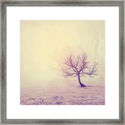 Silence To Chaos - 13t Framed Print by Variance Collections
