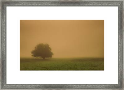 Silent And Still Framed Print by Don Schwartz