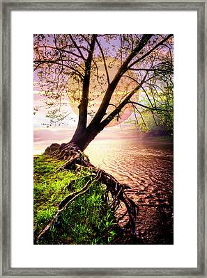 Silent As Night Falls Framed Print