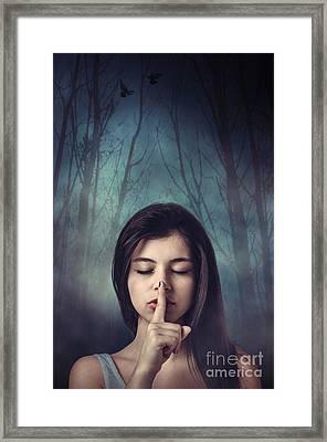 Silent Forest Framed Print by Carlos Caetano