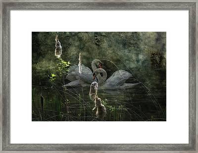 Silent Love Framed Print