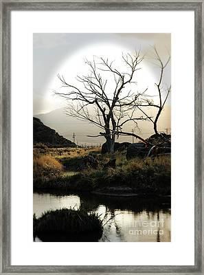 Silent Lucidity Framed Print