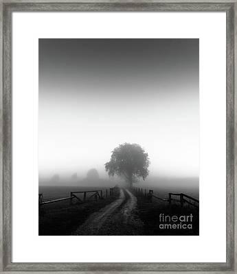 Framed Print featuring the photograph  Silent Morning  by Franziskus Pfleghart